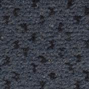 2550073.jpg