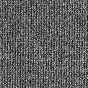 3170079.jpg