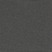 3920073.jpg