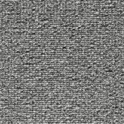 5270074.jpg